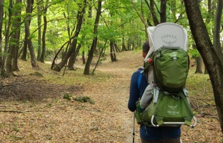 walking-month-wirtek